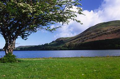 Loweswater from the Shore Path